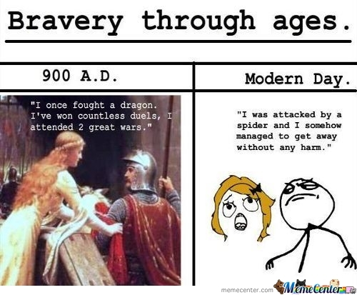 Bravery Through  Ages...