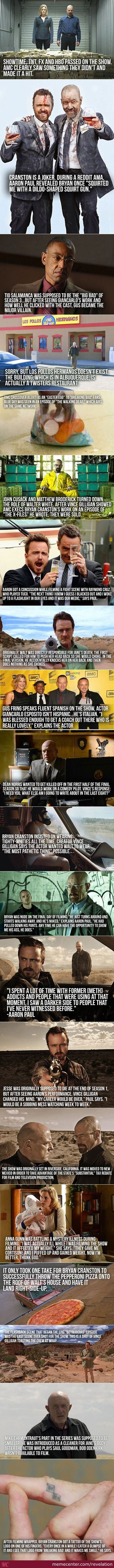 Breaking Bad Interesting Facts