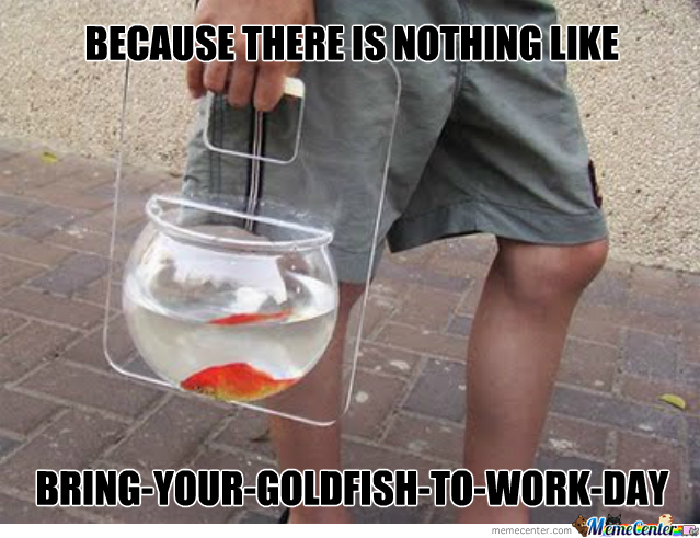 Bring-Your-Goldfish-To-Work-Day