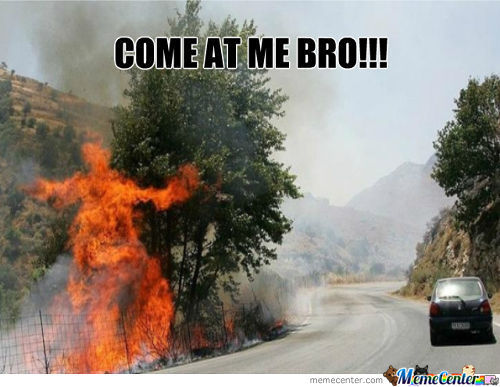 Bro Down With Burning Passion
