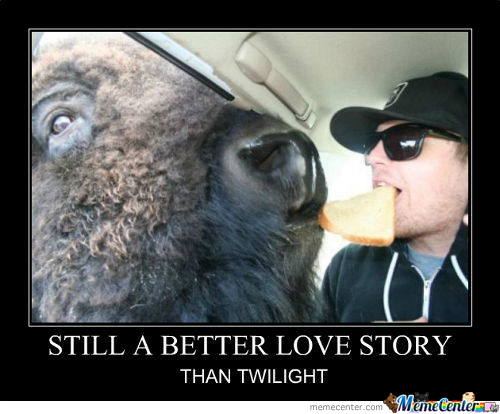 Buffalo And Man Love