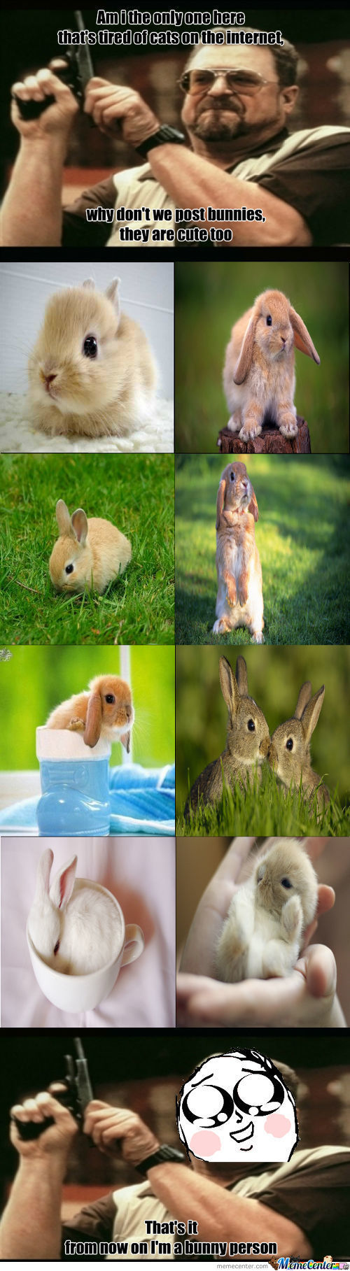 Bunnies Are Cute Too!