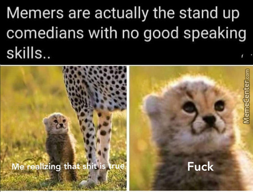 But Mom Said I Have Excellent Speaking Skills