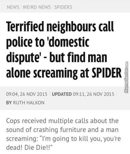 But What If It Was A Female Spider