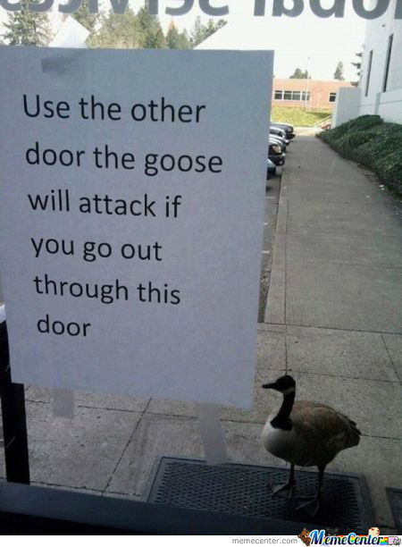 Call The Goosebusters