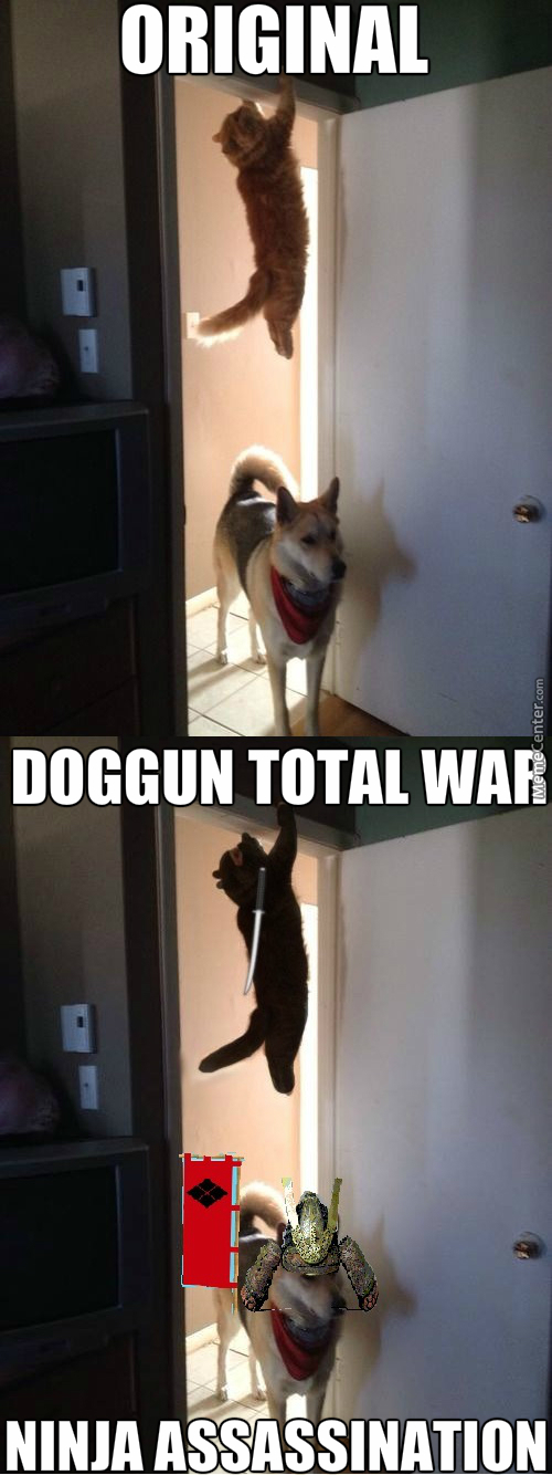 Can't Wait For The Next Doggun Total War Game