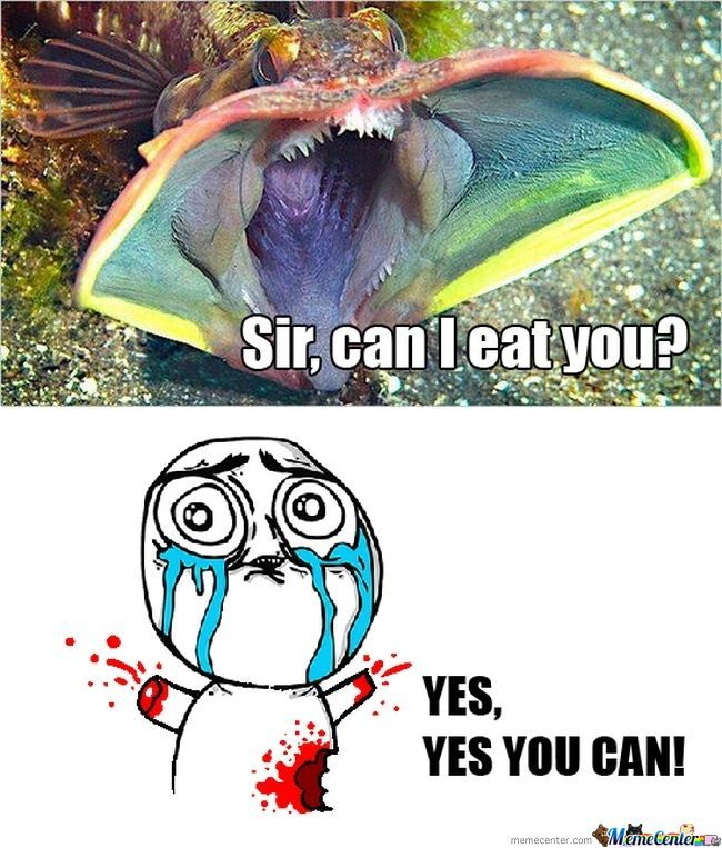 Can I Eat You?