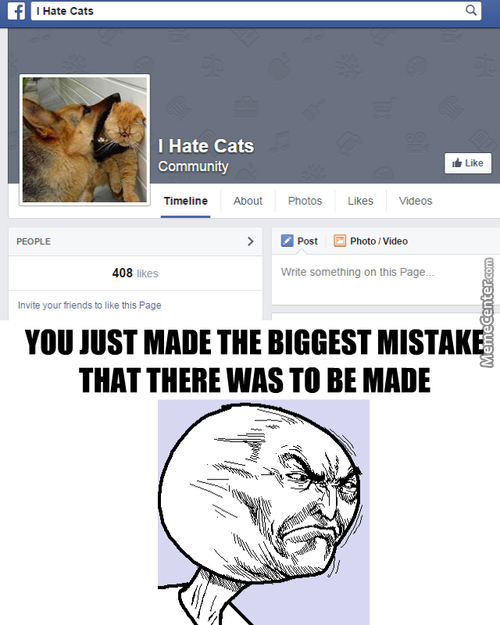 Can You Believe It? Cat Hate On The Internet? Phaha He's Dead
