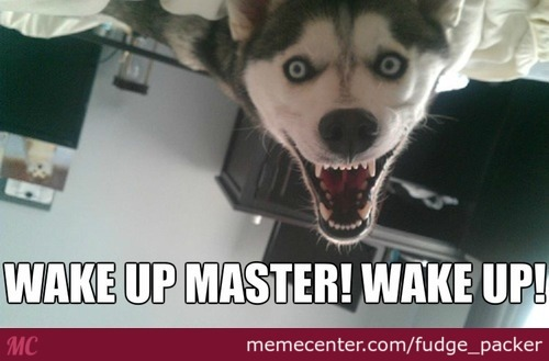 Can You Wake Up Dead?