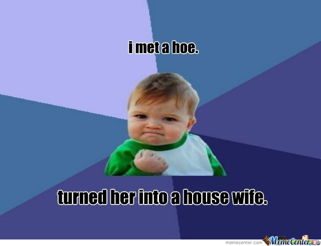 cant turn a hoe into a house wife