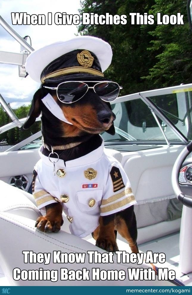 Captain Doge
