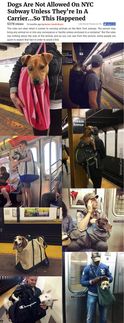 Carry Them Through The Subway, So They Carry You Through Tough Times