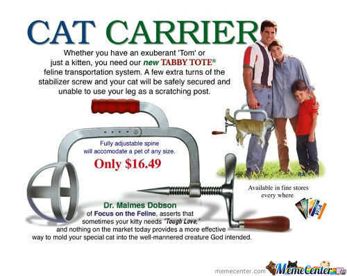 Cat Carrier, A Must-Have!