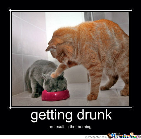 when i got drunk Getting my wife drunk i like to get my wife drunk at home, and watch her stagger around drunkenly  at first i got so drunk so fast,.