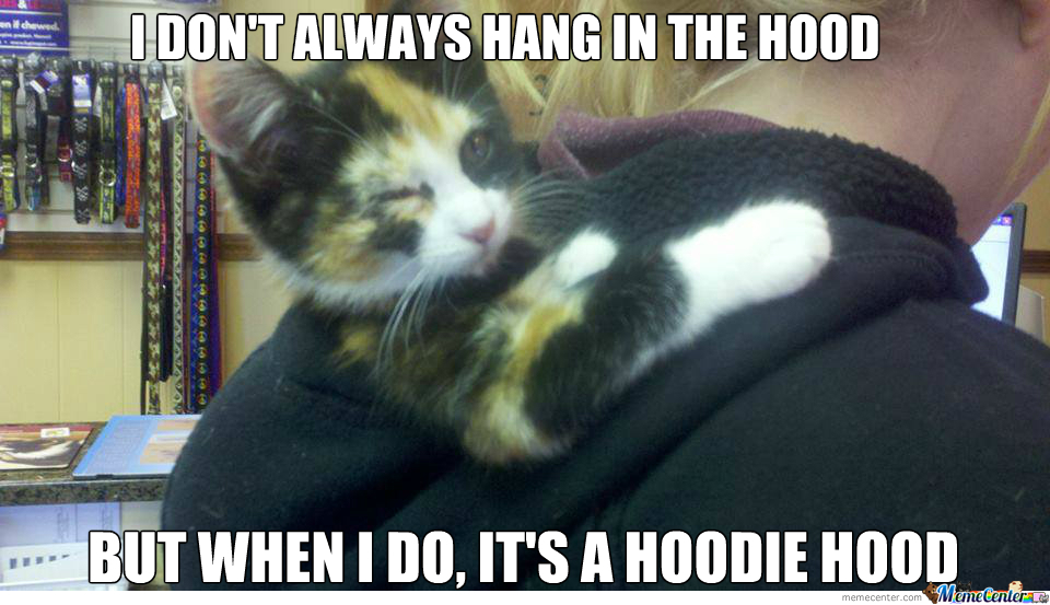 "Cat In The ""hood"""