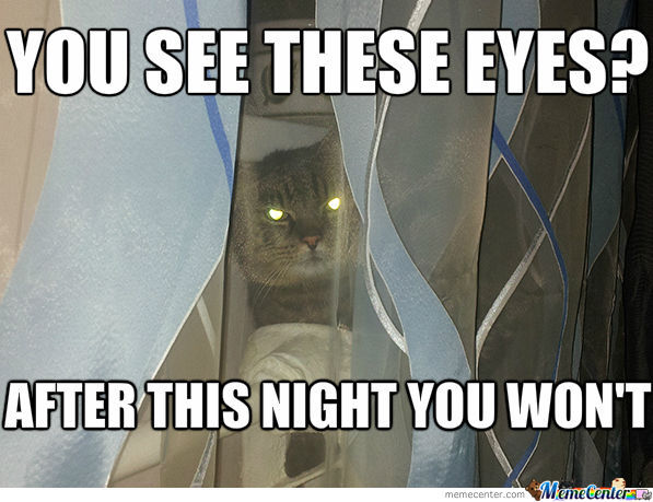 cat murderer_o_1021830 glowing eyes memes best collection of funny glowing eyes pictures