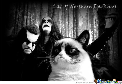 Cat Of Northern Darkness