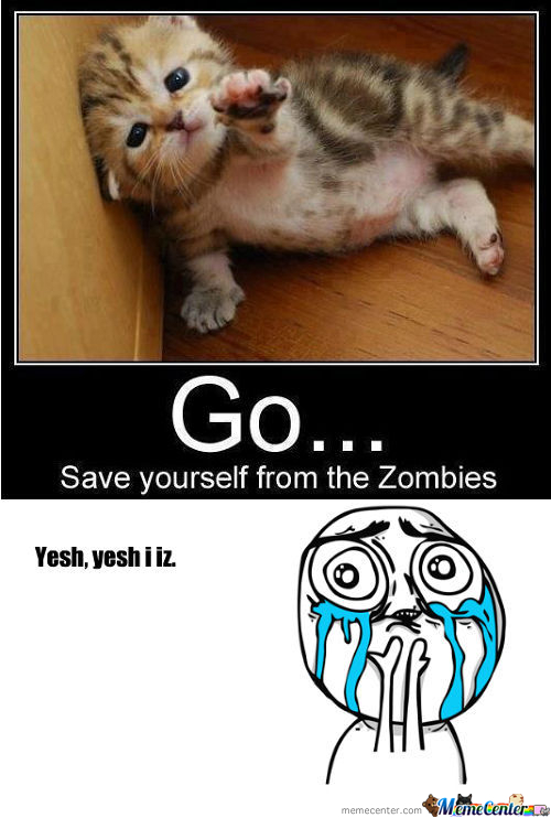 Cat Saved Me From The Zombies