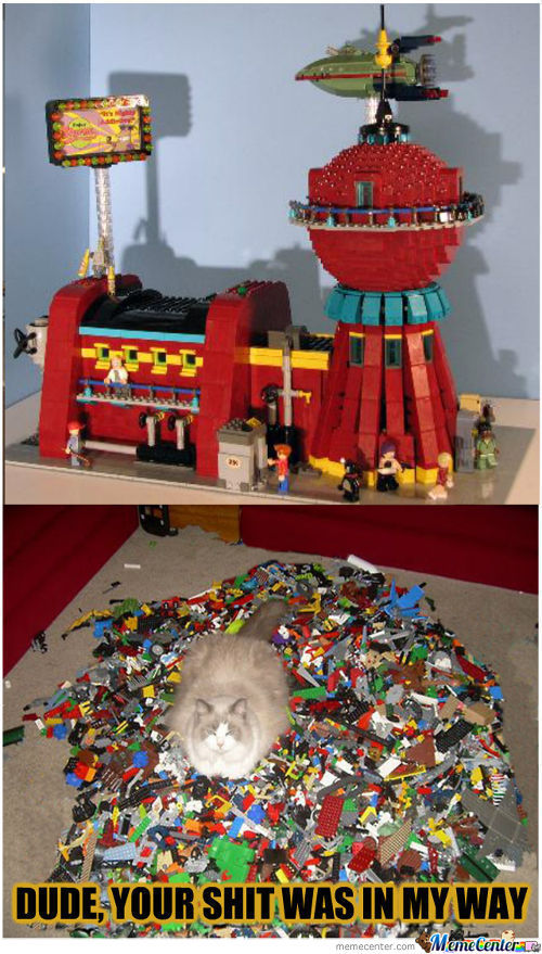 Cat Sitting On Legos, Impossibru!