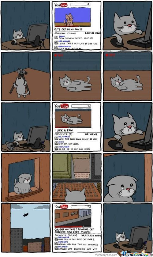 Cat Youtube