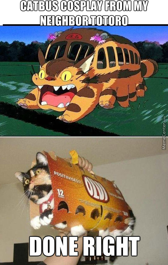 Catbus Cosplay From My Neighbor Totoro