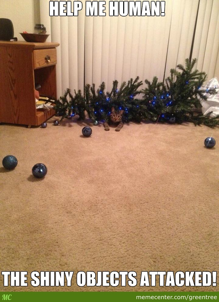 Cats And Christmas Trees! by greentree - Meme Center