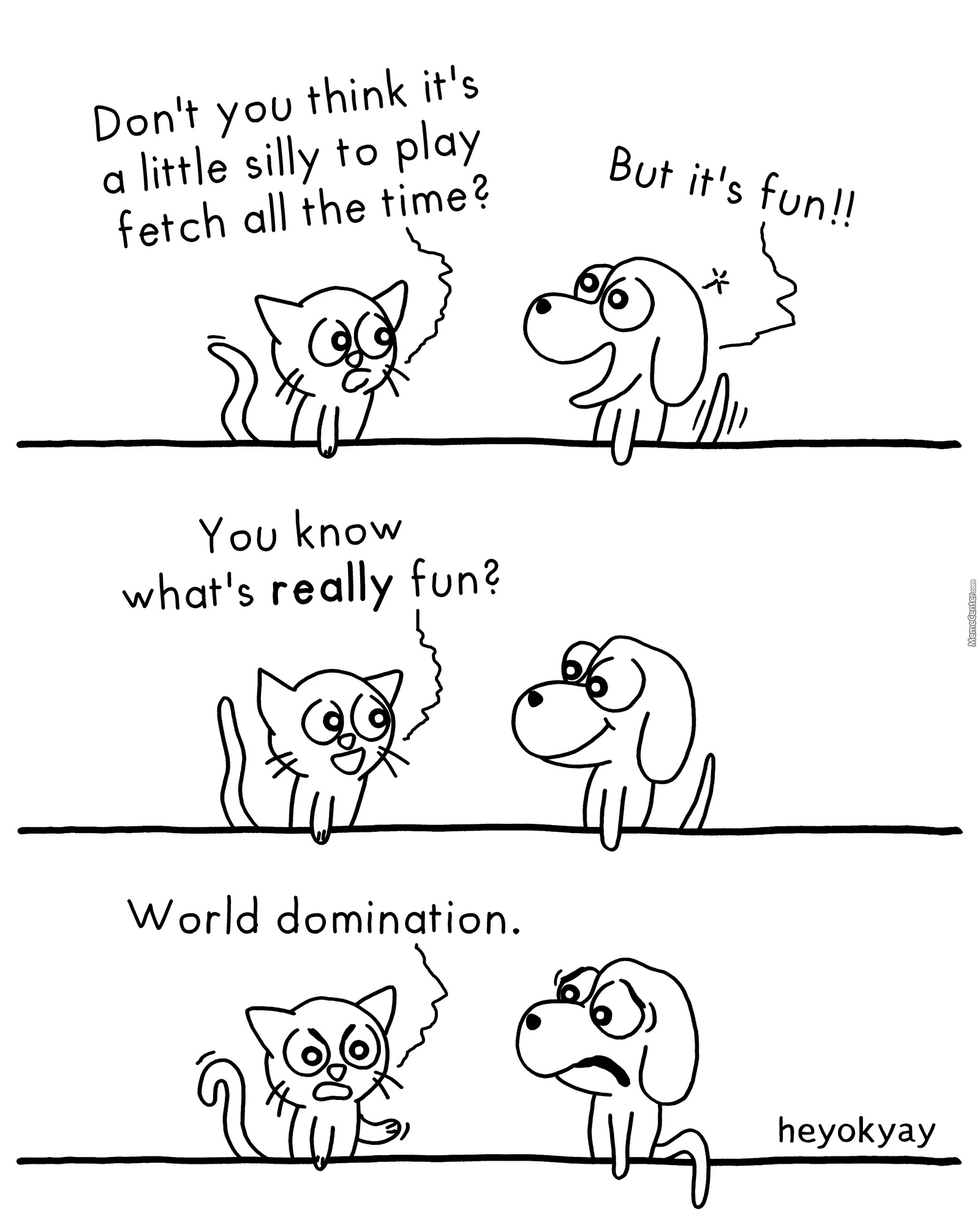 Cats And Dogs: The Small Differences