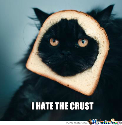Cats Hate The Crust