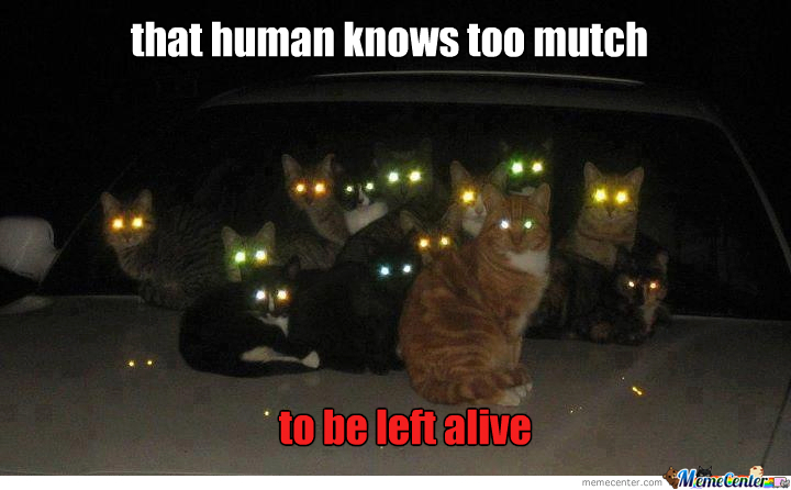 [Image: cats-the-conspiracy_o_2157997.jpg]