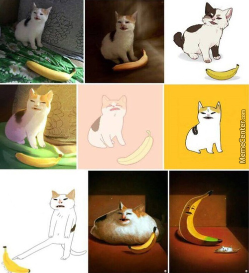 Catto No Like Banana