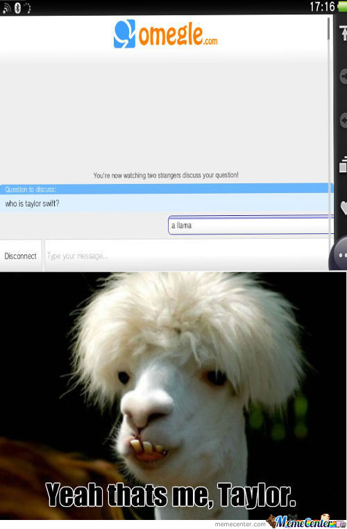 Celebrity Shocking News: Taylo Swift Has Been A Lama The Whole Time