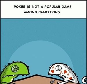 https://img.memecdn.com/chameleons-playing-poker_fb_269625.jpg