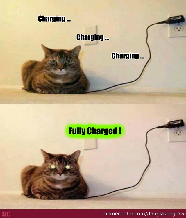 charging your cat_o_2671631 charging your cat by douglasdegraw meme center