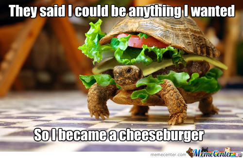 Cheese Burgtle