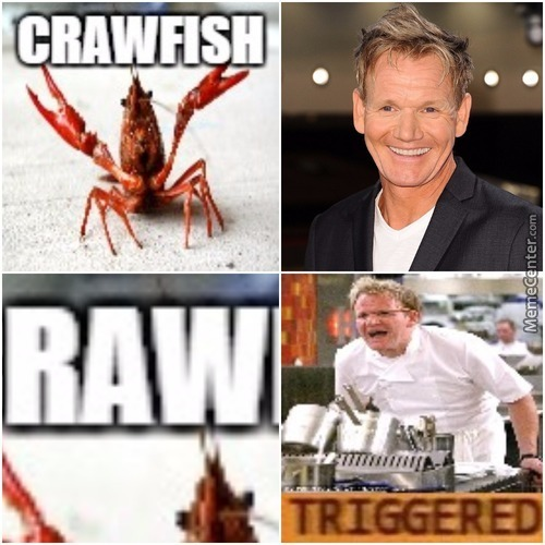 Chef Ramsay Hates Raw.