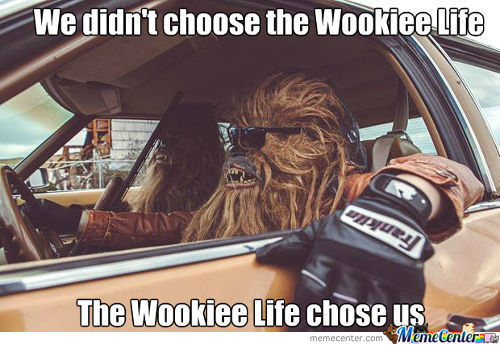 Chewie And The Gang