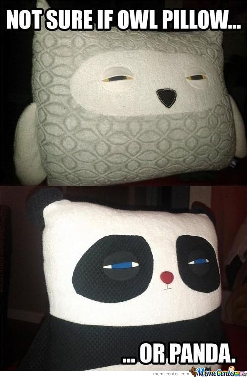 Choosing A Pillow, Fry Style