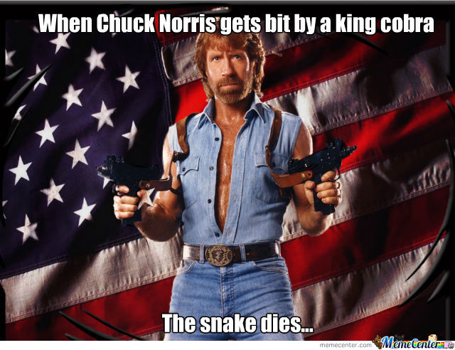 Chuck Norris And Snakes