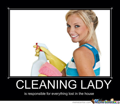 Cleaning Ladies...