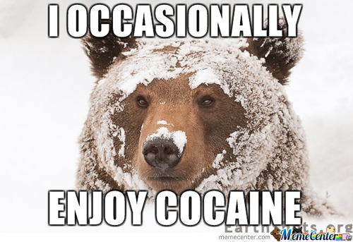 Cocaine Memes Best Collection Of Funny Cocaine Pictures
