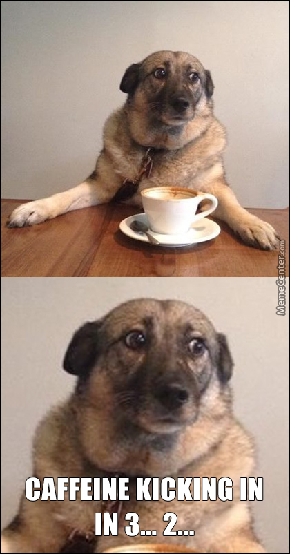 Coffee Dog Be Trippin