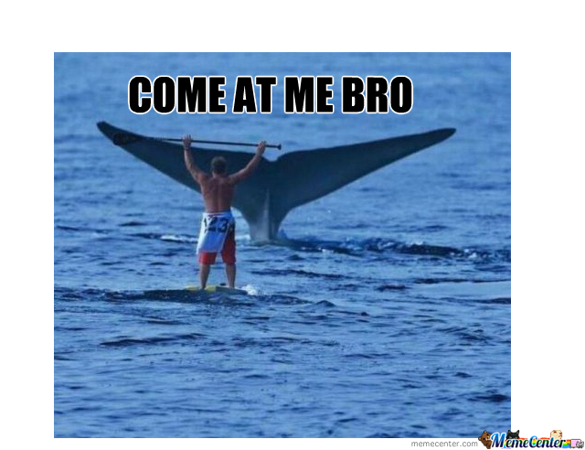 Come At Me Bro Lvl Whale