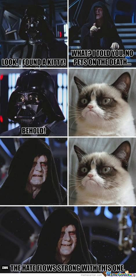 Come To The Dark Side! We Have Cats!