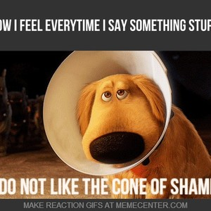 cone of shame by recyclebin meme center