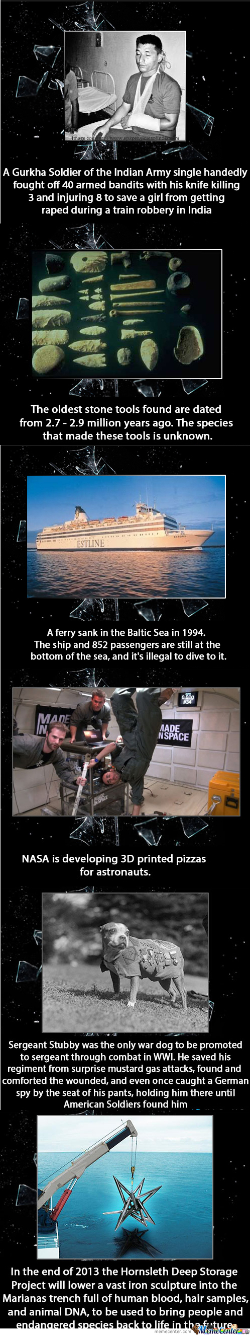 Cool Facts And Faith In Humanity