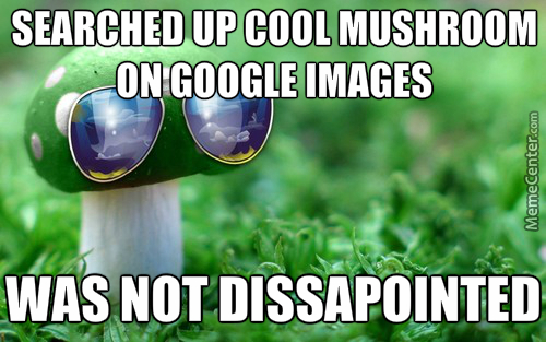Cool Mushroom Gives You 1Up