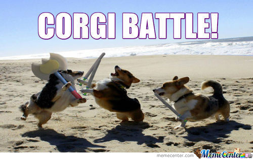 Corgi Battle!