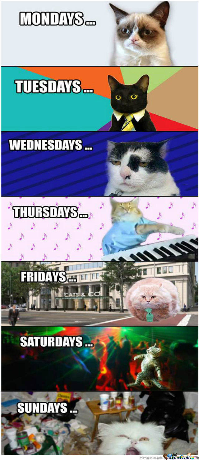 countdown to the weekend_o_837339 countdown memes best collection of funny countdown pictures,Count Down Meme