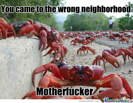 Crab's Neighborhood