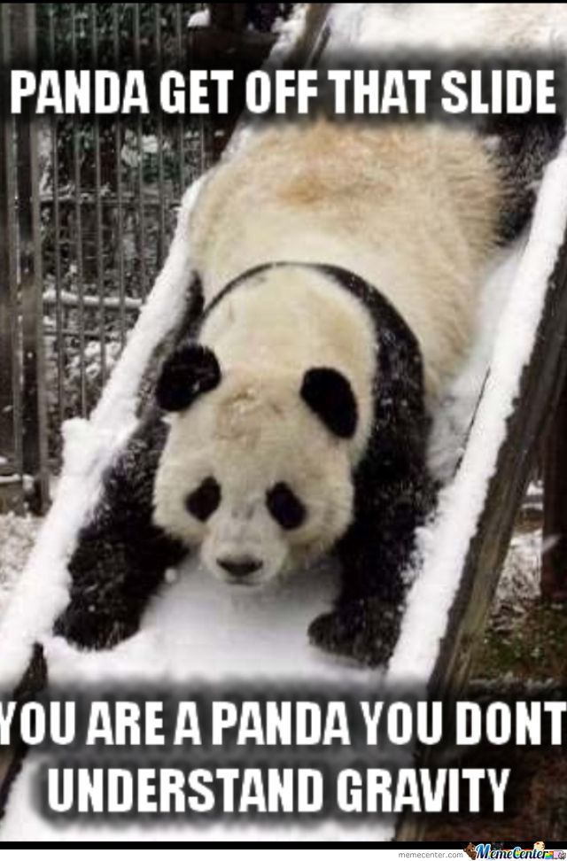 Cute Panda by kimmm - Meme Center Love Sayings To A Girlfriend
